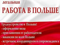 Рабочие визы: Чехия, Польша. 100% получения визы