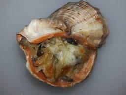 Рапан фаршированный в ракушке (с лососем, спаржей и мидиями)