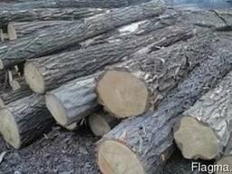 Расчистка участков, лесополос, территорий, кладбищ и т.д.