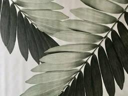 Распродажа уценка плакат листья пальма рисунок Замия Palm Zamia Furfuracea Mexican 267. ..