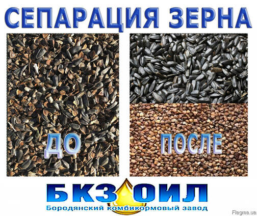 Разделение зерновых культур, сортировка зерна, сепарация