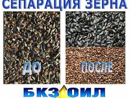 Разделение зерновых культур, сортировка зерна, сепарация - фото 1