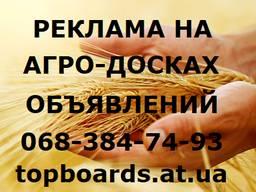 Разместить объявление на АГРО досках Украины