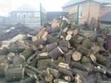 Реализуем дрова твердых пород - фото 2
