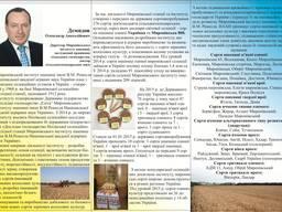 Яра пшениця та ячмінь від виробника