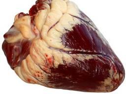 Продам сердце говяжье, печень свиную ПП.