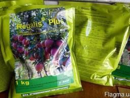 Регалис регулятор роста садовых растений.