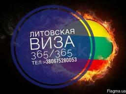 Литовская виза . Литва. Виза. 365/365