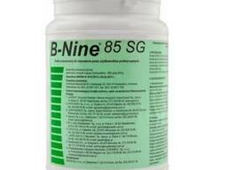 Регулятор роста Би Найн B-Nine 85 SG для хризантем