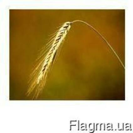 Регулятор роста Хломеквид в. р. к. (хлормекват-хлорид) 114грн