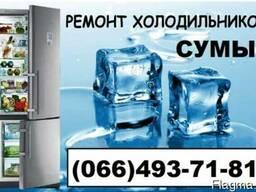 Ремонт холодильника Вестфрост,Занусси,Либхер,Данфос,Аег,Сумы