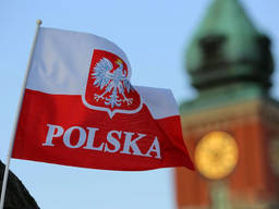 Репетитор польского языка, курсы польского в группах и онлайн, сертификат польского