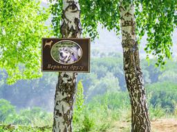 Ритуальная памятная табличка для собаки с фото крепится на дерево