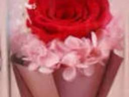 Роза в колбе с LED подсветкой Большая - Красная