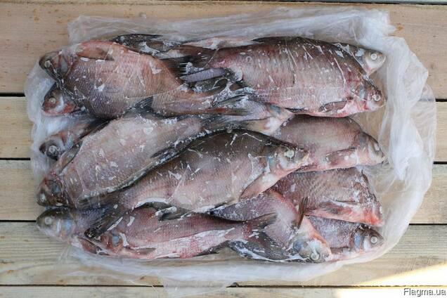 Рыба Лещ оптом