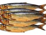 Рыба морская Г/К, Х/К - фото 1