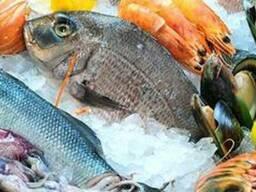 Рыба, мясо. От 1000 грн. По Харькову доставка бесплатная