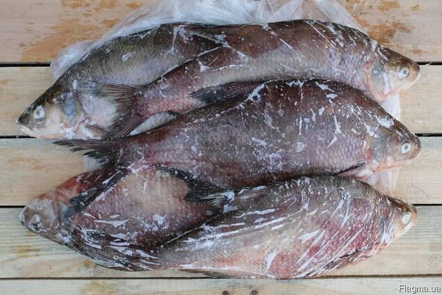 Рыба свежемороженая речная
