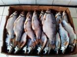 Рыба вяленая от производителя - фото 1