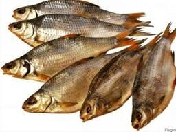 Рыба вяленая плотва лещ густера щука судак окунь