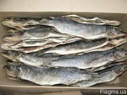 Рыбцех продаёт щуку вяленую потрошонную
