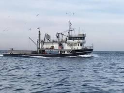 """""""рыболовный сейнер стамбул"""" """"рыболовное судно турция"""""""