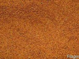 Рыжей семена