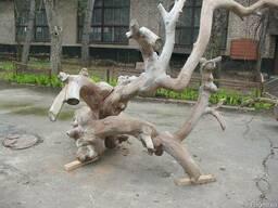 Сад. Декор для сада. Коряга старого дерева