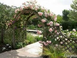 Садовые арки и перголы деревянные
