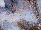 Сапоги из нубука - фото 1