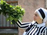 Саженцы фундука Трапезунд Украина, Киев, Краснодар, Крым - фото 4