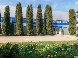 Сдам в аренду офис 200 м2 в г. Кропивницкий.