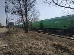 Сдам в аренду вагоны - зерновозы (120 м. куб)