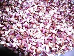 Семена чеснока - воздушка и зубок
