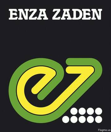 Семена Enza Zaden