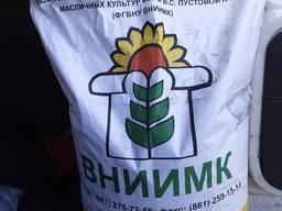 Семена кондитерского подсолнечника