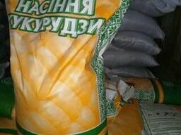 Семена кукурузы Даниил ФАО 280 2018 год!