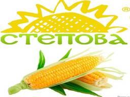 "Семена кукурузы Даниил ФАО 280 (""Степова"")"
