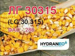 Семена кукурузы Лимагрейн LG 30315 ФАО 280