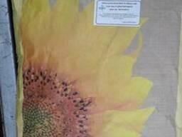 Семена кукурузы, подсолнечника Американской сел