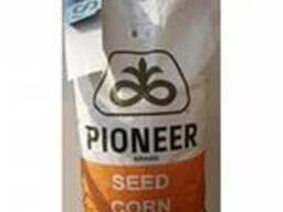 Семена кукурузы ПР39А50 ФАО 200
