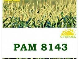 Семена кукурузы РАМ 8143 ФАО 260 Степова