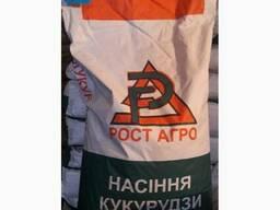 Семена кукузуры РостАгро - Галатея, Хотин, Збруч, Кремень - фото 1