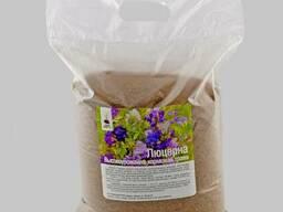 Семена люцерны немагниченая