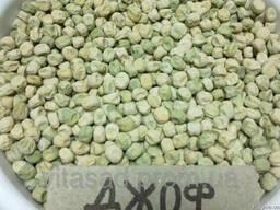 Семена овощного ( сахарный) гороха Джоф оптом 15000грн/т.