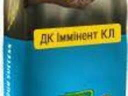 Семена озимого рапса ДК Имминент КЛ (ДК Іммінент КЛ)