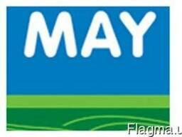 Семена подсолнечника Армада, May Agro Seed, под евролайтинг