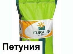 Семена подсолнечника (Евралис) ЕС Петуния 2015 г.
