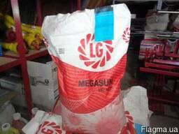 Семена подсолнечника (Лимагрейн) Megasun 2015 г.