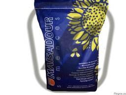 Семена подсолнечника Маисадур (Maїsadour semences)